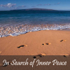 In Search of Inner Peace